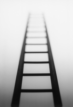 binary ladder